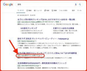 日本語ドメインを説明した画像